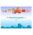 cartoon sea fauna template vector image