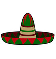isolated mexican hat vector image