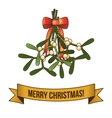 Christmas holy branch icon vector image