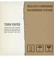 Torn cardboard pieces vector image