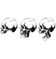 White human skull in profile projection set vector image