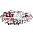 feet word cloud concept vector image