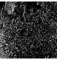 black and white cracked texture vector image