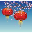 Chinese Lantern with Sakura Branch2 vector image