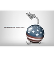 USA independence day with flag and vector image