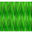seamless texture with green grass lawn vector image
