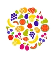 fruit objects in round vector image