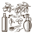 Vintage olive oil set vector image