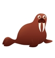 Walrus on a white background vector image