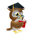 owl reading book vector image
