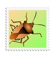 stamp with image of beetle vector image vector image