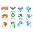Set of isolated zodiac signs vector image