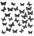 silhouettes of butterflies vector image
