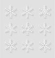Decorative paper snowflakes vector image