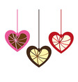 cute hanging hearts vector image