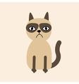 Cute sad grumpy siamese cat in flat design style vector image