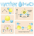 various representations of water molecule h2o vector image