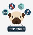 pet care design vector image