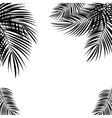 Black Palm Leaf on White Background vector image