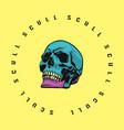skull color vector image