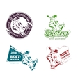 Retro color skateboarding labels logos and vector image