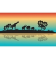 Silhouettes of african animals in morning vector image