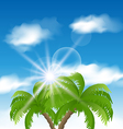 Summer background with sunlight and palmtree vector image