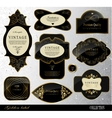 black gold labels vector image