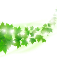 flying maple leaves vector image