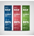 Big sale vertical banners vector image