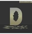 Letter D Broken mirror vector image