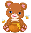 Bear Holds Honey Jar vector image