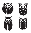 Stylized owls on white background vector image