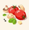 Ingredients Italian cuisine vector image