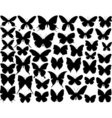 Butterfly shapes vector image