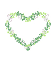 Fresh Vine Leaves in Beautiful Heart Shape vector image vector image