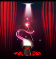 the concept of magic shows and entertainment vector image