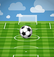 Soccer ball lying on the grass vector image vector image