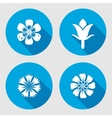 Flower icons set Chamomile daisy blue poppy vector image