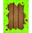 Wooden background vector image vector image