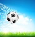 Soccer ball in goal vector image