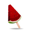 watermelon slice concept piece isolate vector image