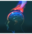 Headaches with Flames vector image