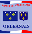 flag of french province orleanais vector image