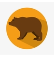 Bear animal design vector image