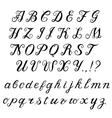 Calligraphy handwritten alphabet vector image