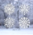 Snowflakes collection on winter blurred background vector image