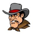 Danger cowboy vector image