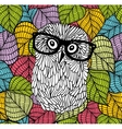 Smart owl in glasses on the colorful background vector image