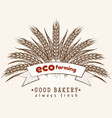 eco farming emblem with wheat ears vector image vector image